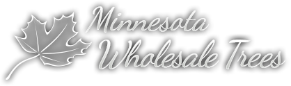 Minnesota Wholesale Trees